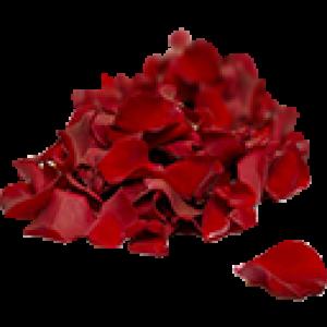 Лепестки Роз (0)
