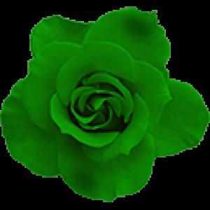 Зелёные Розы (0)